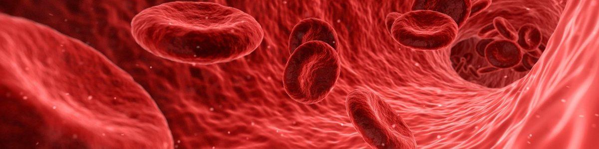 Harnstoff Blutbild